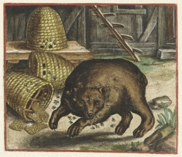 026 RP-P-1996-70 Fabel van de beer en de bijen, Marcus Gheeraerts (I), 1567 fabel erger je niet