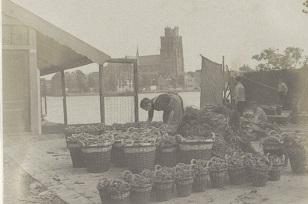 RP-F-2002-105-59-1 - kopie Markt in Dordrecht, op de achtergrond de Grote Kerk, G. Hidderley (toegeschreven aan), ca. 1900 - ca. 1910