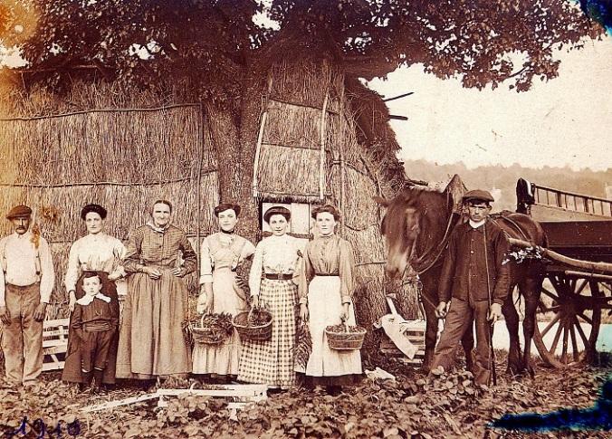 008 historique-entreprise-Cabasset-1910-fraises-paniers aardbeienplukkers