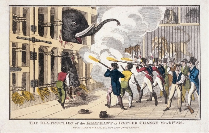 001 Belch,_William_-_print;_engraving_-_The_Destruction_of_the_Elephant_1826 Museum of London